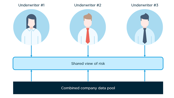 Shared-view-of-risk
